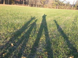 Tall Shadow Family