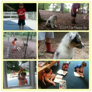 Day 35: Golf camp, catching bugs, introducing Furball#2 to the chickens, practicing in in our new work books